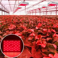 Discount 1500W Haute intensité LED Dual Chips 380-730nm Lumière de croissance de la législation de la lumière de la lumière de la légumineuse