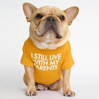 Pet Köpek Giysileri Köpek Kazak Yuvarlak Yaka T-Shirt Fransız Bulldog Moda Mektup Baskılı T-shirt Yavru Giysileri Pet Malzemeleri Deniz DDC5106