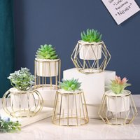 Dekoratif Çiçekler Çelenkler Nordic Tarzı Etli Bitkiler Saksı Ferforje Vazo Basit Çerçeve Çiçek Seramik Su Potu Yeşil Ekici Ev