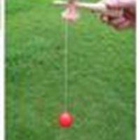 Размер мяч большой горячий 19 * 6 см кендама продажа 120 шт. Японские традиционные деревянные игрушки игрушечные образования подарок 7 цвета оптом бесплатно