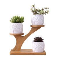 Simple White Plant Plant Plant Pot Holder Ceramica Gufo Pumpkin Pattern Pot Treetop Shaped Bamboo Shelf Pot Pot Plant Set T200104