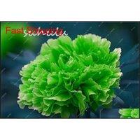10 pcs / sac couleur mélangé pivoine graines d'arbre de rose chinois graines de pivoine belle décoration de bonsai fleur p qylbhc emballage2010