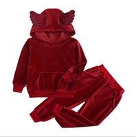 80-140 cm Kış Pleuche Çocuk Eşofman Uzun Kollu Hoodies + Tayt Pantolon İki Parçalı Suit Giyim Çocuk Spor Günlük Kıyafetler G10509