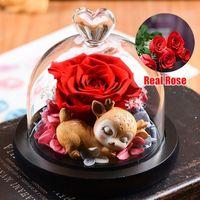 Fleur éternelle Fourniture à la main préservée Véritable Rose Verre Couvercle Immortal Fleurs avec boîte Valentin Jour Anniverse Cadeaux pour la petite amie