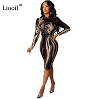 Günlük Elbiseler Liooil Pullu Seksi Mesh Sheer Bodycon Midi Elbise 2021 Sonbahar Kış Uzun Kollu Sızdırmaz Kadın Parti Gece Kulübü