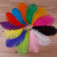 200pcs pack 10- 12 inch Ostrich Feather Plume Craft Supplies ...