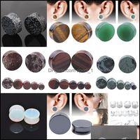 & Tunnels Jewelryalisouy 2Pcs Lot Stone Plugs Gauges Earrings Plug Flesh Tunnel Expander Ear Stretcher Body Piercing Jewelry 1721 Q2 Drop De
