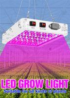 전체 스펙트럼 LED phyto 성장 램프 85-265V 공장 FITO 빛 1000W 2000W LED 수경법 전구 실내 텐트 성장 상자 veg 씨앗 램프