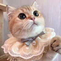 Ropa para perros PET BIB BIB Fashion Gatos ajustables Collar Bufanda linda Estilo Perrito Cuello Flor de encaje con campanas para pequeños gatitos medianos