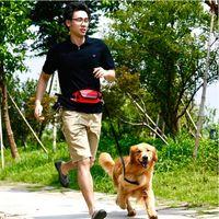 Dog Collars & Leashes Pet Cat Running Jogging Padded Waist Belt Tailup Reflective Strip Elastic Leash Walking Training Set Hands Free