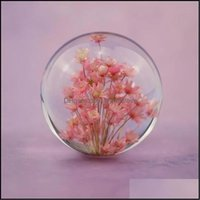 Novelty Décor & Gardennovelty Items Real Red Daisy Crystal Glass Resin Lens Ball Natural Plants Flowers Specimen Christmas Love Mum Gift Wit