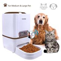Cão tigelas alimentadores iseebiz automático alimentador de animais 6l gato com voz de gravação de voz tela LCD para dispensador 4 vezes em 1 dia