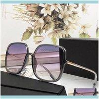 Moda Aessórios Sunglasses Sunglasses Suportes Carro Cão De Segurança De Segurança Pads Nose Pads Top Alta Qualidade Original Counter Designer Espetáculos