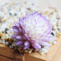 Succules artificielles Plantes PVC Simulation Aloe Lotus Fleur Paysage DIY Faux Fleur Creative Home Décoration Accessoires DIY