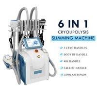 Cryolipolysis 슬리밍 기계 Cryoskin FAT 용해 장치 Lipo 레이저 다극 RF 진공 장비 가정용