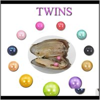 2018 Diy 6-7Mm Freshwater Akoya Oyster With Twins Pearls Mixed 25 Colors Top Quality Circle Natural Pearl In Vacuum Package For Jewelr Jkp3U