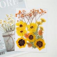 Decorative Flowers & Wreaths 1 Bag Dried For Diy Handmade Jewelry Bookmarks Po Frame Makeup Decoration Necklace Making Craft Accessori