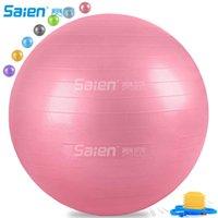 운동 공 (여러 사이즈) 피트니스, 안정성, 균형 요가 운동 가이드 퀵 펌프 포함