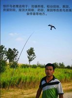 Environmental protection frightening garden orchard fish pond millet special dynamic bird driving Eagle kite
