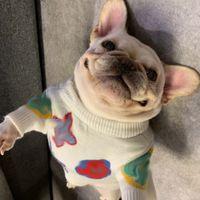 Jacquard Animais de Estimação Camisola De Cão De Alta Qualidade Pet Knit Suéters Teddy Bulldog Chihuahua Cães Camisolas