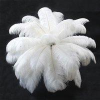 20 ~ 25см белый страус перо шлейфы поставщики поставки свадебные вечеринки таблица центральные украшения