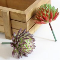 Succules artificielles Plantes Simulation PVC Aloe Lotus Fleur Paysage DIY Faux Fleur Creative Home Decoration DIY Accessoires GWD5592