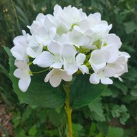 Wedding Wedding Flower Festa Fontes Artificial Hydrangea Head 48cm Falso Single Touch Hydrangeas Real para Centerpieces Home Flores