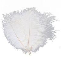 10 шт. Белый страус перо шлейф 20-25 см для свадебных центральных встреч свадебный декор Party Decor Supply Supply Decor DWF5427