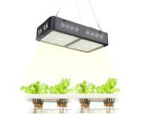 أدى النمو ضوء كامل الطيف فكرة النمو 1000 واط / 2000 واط مصباح للنباتات الداخلية خيمة خيمة الخضار الزهور الفيتو مصباح