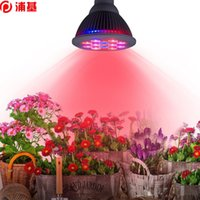 LED Grow Lampadina E27 12W 85-265V Miracle Grow Plant Light 110 V 220 V per la serra Biologica Blooming Plants