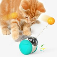 Cat Toys Pet Interactive Funny Balance Toy Car Tumbler Swing Relieve Boredom