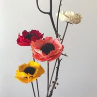 Decorative Flowers & Wreaths 1 Branch Natural Dried Poppy Material Plant Flower DIY European Dry Handmade Wedding Home Style Decoration F5Z1