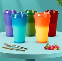 Tumblers 16oz Heat Color Changing Cups 5 Colors Per Set Straight Drinking Flask Plastic Sippy Cup Portable Water Bottle A02