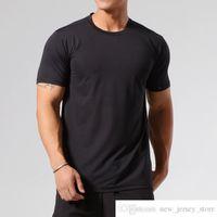 Özel Kendi Marka ASRV Fitness Hızlı Kurutma T-Shirt Buz İpek Koşu Ince T Kısa Kollu Sıkı Eğitim Atletik Giyim Erkek Adam Yüksek Elastik
