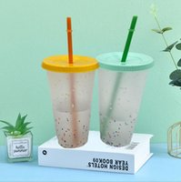 cheapest!!24oz Color Changing Cup Plastic Drinking Tumblers with Straw Summer Reusable cold drinks cup magic Coffee beer mugs GWA4295