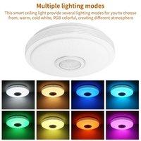 별이 빛나는 스카이 갓 천장 조명 음악 블루투스 스피커 현대 LED 펜던트 램프 지원 앱 제어 / 원격 제어