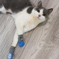 4pcs / 세트 귀여운 강아지 개 양말 코튼 안티 슬립 고양이 신발 가을 겨울 실내 착용고 발 통로 보호 장치