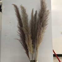 Decorative Flowers & Wreaths The 20Pcs lot Wholesale Phragmites Natural Dried Pampas Grass For Home Wedding Decoration Flower Bunch 56-60cm 209 V2 OXKF
