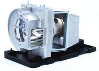 NP34LP / 100013979 Sostituzione lampadina proiettore lampadina con custodia per NEC NP-U321H NP-U321HI-TM NP-U321HI-TM NP-U321HI-WK NP-U321H-WK NP-U322HI Proiettori
