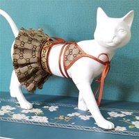 Sexy Pet Bikini Set Dog Cat Soutien-gorge Jupe Designer Dentelle Braz Chiot Dog Vêtements de chat