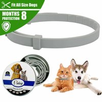 Dog Collars & Leashes Cat Collar Adjustable Anti Flea And Tick Neck For Pet 8 Months Protection Accessories