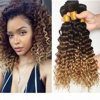 Ombre Human Hair Extensions 3 Bundle - три тон 1b 4 27 коричневая блондинка омбре малазийская глубокая волна волосы WFTS 3шт