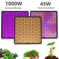 1000W LED Grow Light Panel Full Spectrum Phyto Phyto Lampada AC85-240V Spina EU / USA per impianti di tenda interna lampade di crescita