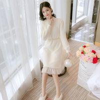 dresses Autumn and winter fashion show thin temperament baing with overcoat women's long mesh Plush skirt
