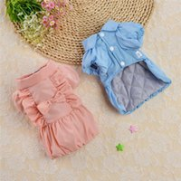 Dog Apparel Pink Blue Color Luxury Cute Design Pet Clothes For Autumn And Winter Thickened Doll Collar Coats