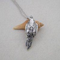 Odin'in kuzgun karga neckalce wicca ay kolye unisex viking için muska takı için