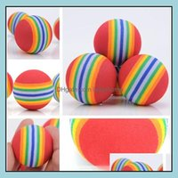 Supplies Home & Gardendiameter 35Mm Interesting Pet Dog And Cat Toys Super Cute Rainbow Ball Cartoon Plush Toy Ia602 Drop Delivery 2021 Oh39