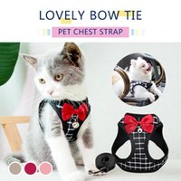 Dog Collars & Leashes Harness And Leash Set Adjustable Pet Vest For Small Cats Dogs Soft Breathable Mesh Chest Strap Accessories