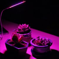 USB LED Bitki Cob Kurşun Büyümek Işıkları Taşınabilir Kapalı Güneş Işık Takviyesi Lambaları Hafif Bahçe Çiçek Ekimi Lamba Et Masa Tam Spektrum