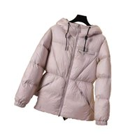 Down Jacket Womens Luxury Designer Clothes Woman With Hood 550 Fill high Quality Brands Star Same Style International Famous Brand Temperament Winter Asian Code